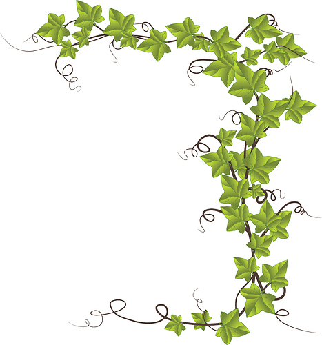 1610-Free-Clipart-Of-An-Ivy-Border