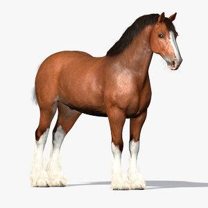 Belgian Draft Horse 3D - 2